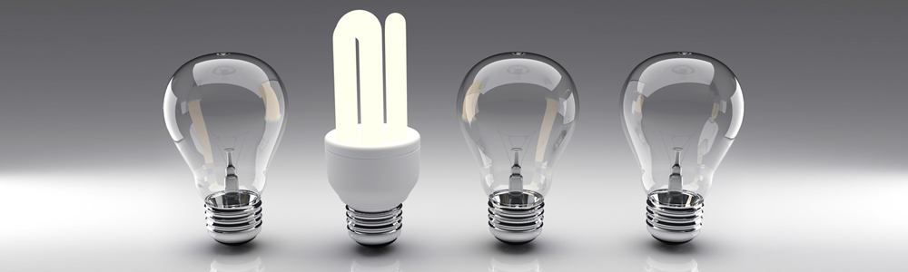 line up of light bulbs